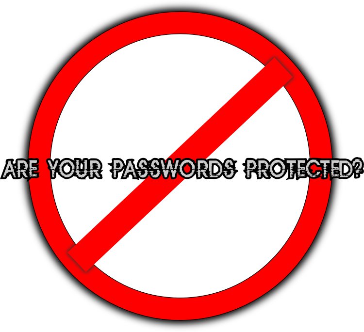 How to protect passwords properly?